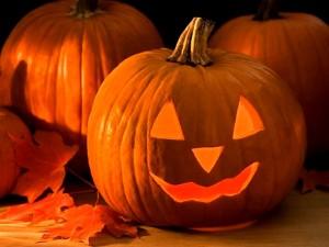 pumpkin5